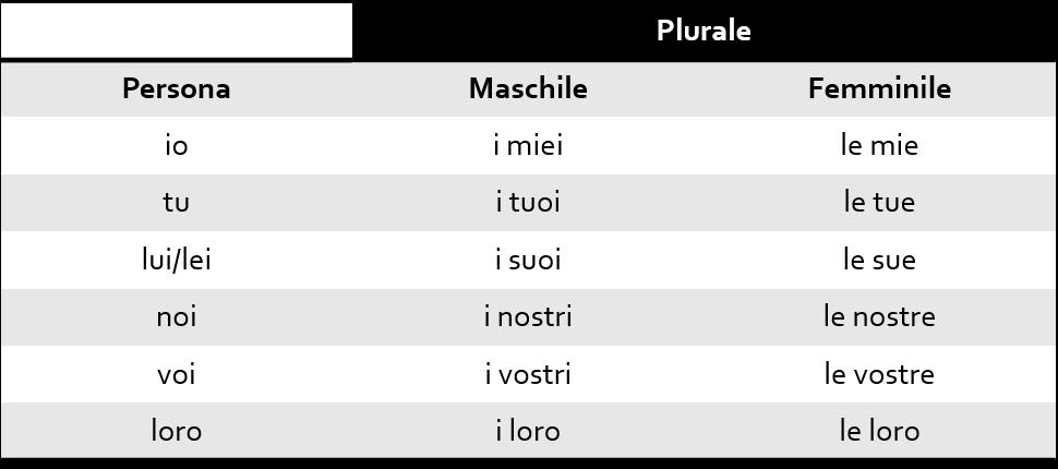 Possessivo em Italiano Plural 2 - Possessivos em Italiano – Como utilizar